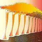 Forest columns by IrisGelbart