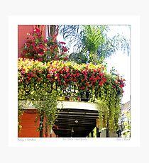 Flowering Balcony Photographic Print