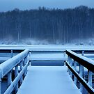 a frozen spencer lake by iamwiley