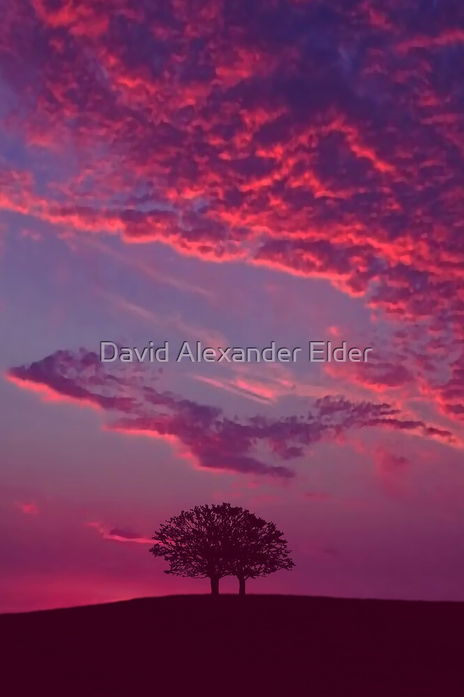 Blazing Double Tree by David Alexander Elder