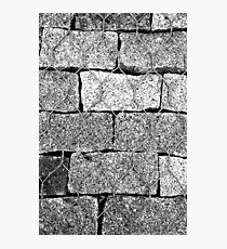 Brick Wire Photographic Print
