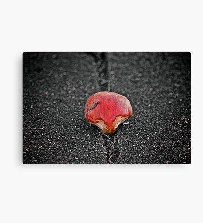 just an apple Canvas Print