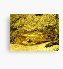 Jabba or what?{move over, George Lucas} Canvas Print
