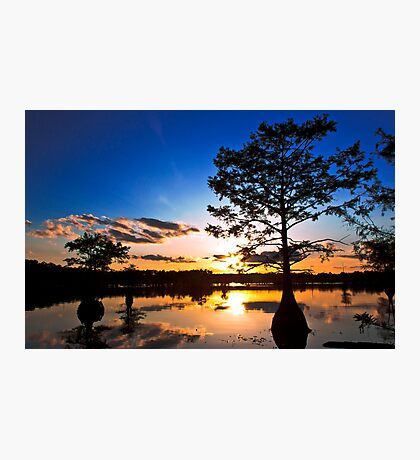 The Brightest Star Photographic Print