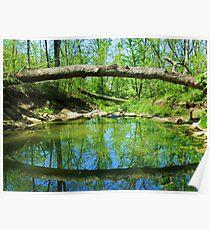 Natural Bridge Poster