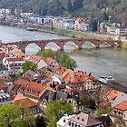 View of Heidelberg by karina5