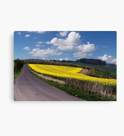 A Field Full of Sunshine Canvas Print