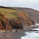 Abbotsham Cliffs by John Burtoft