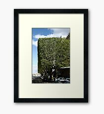 Topiary? Framed Print