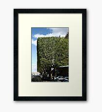 Topiary? Framed Print