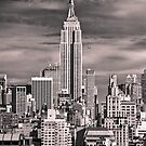 Skyline of New York City by danwa
