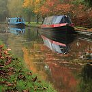 Autumns beauty around the Canal by vonniepyn