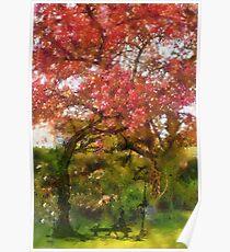 My Appletree - Edegem - Belgium Poster