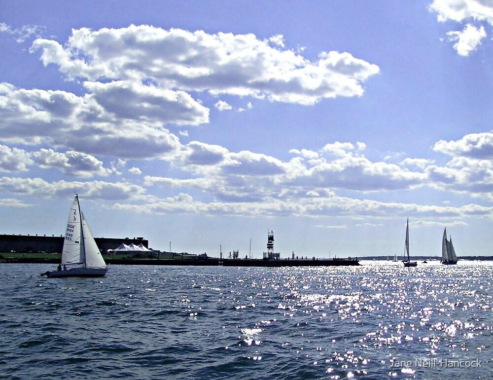 Three Sailboats In The Bay by Jane Neill-Hancock