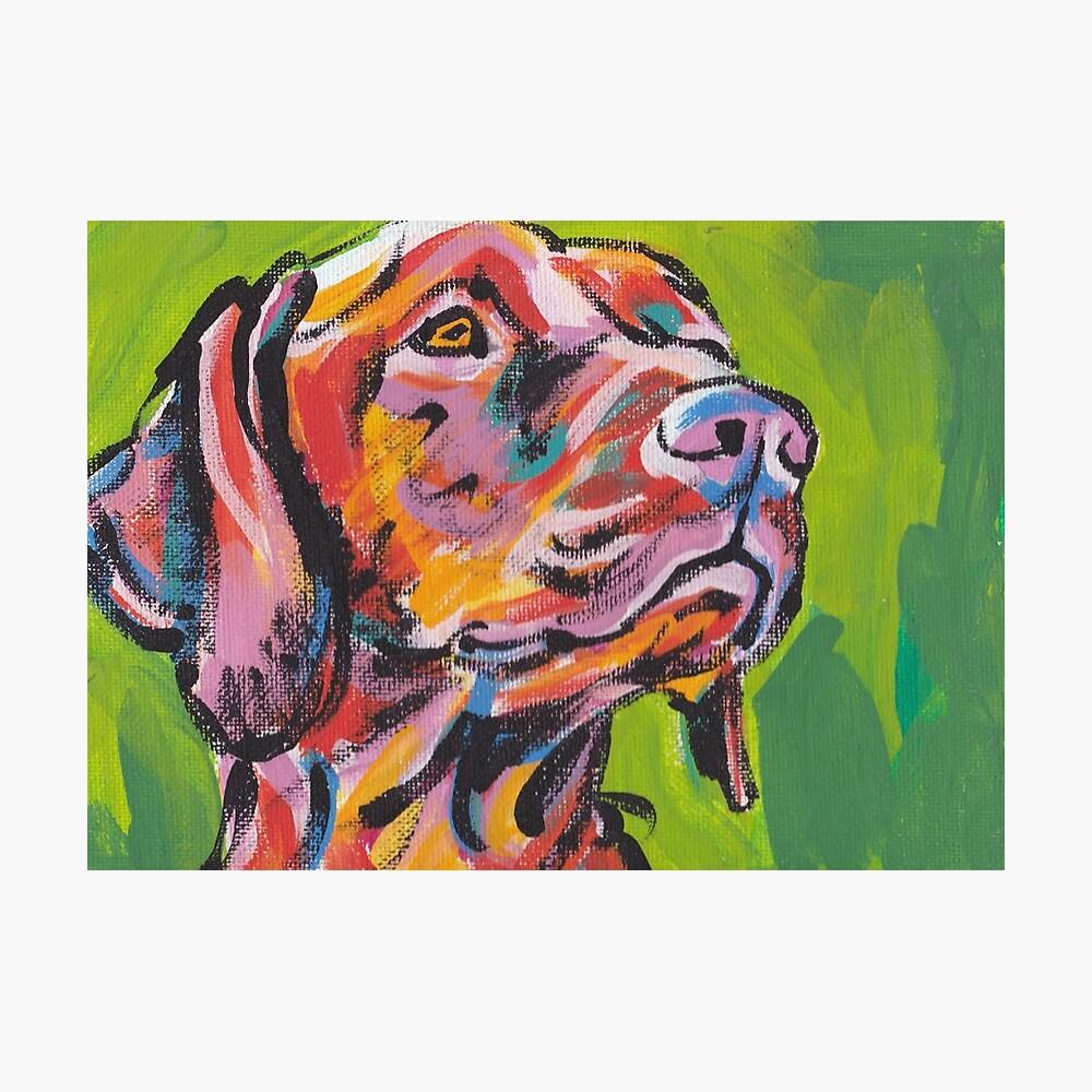 Vizsla Dog Arte pop colorido brillante Lámina fotográfica