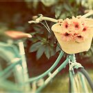 My new bike meets Lensbaby by Suzanne Cummings