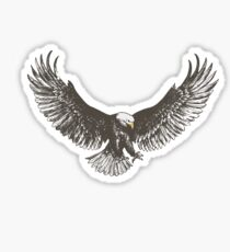 Eagle swoop Sticker