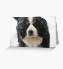 Can't I Stay Out a Little Longer? Greeting Card