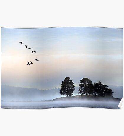 morning mist at dulverton lake Poster