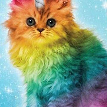 Unicorn Rainbow Cat Kitten Funny by arrazak