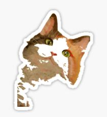I'm All Ears - Cute Calico Cat Portrait Sticker