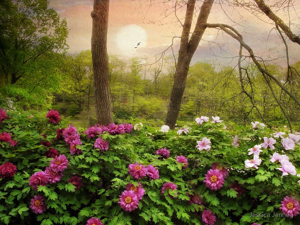 Garden of Peonies by Jessica Jenney