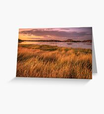 Willow Lake Violet Greeting Card