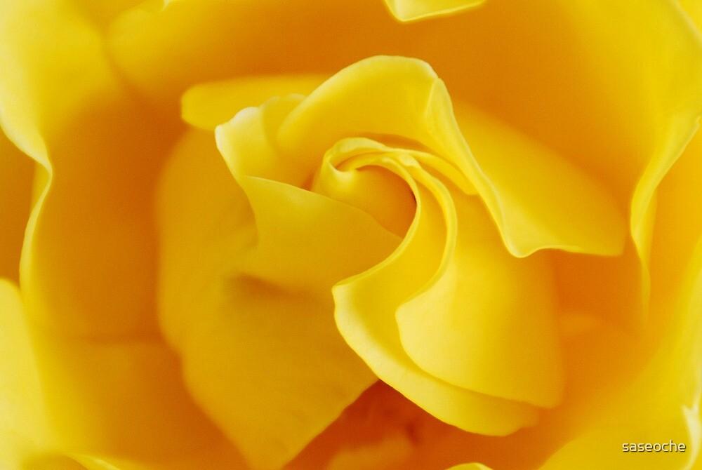 Yellow Precious by saseoche