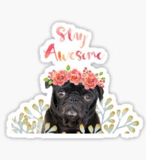 Stay Awesome Pug Sticker