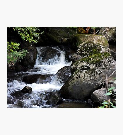 Taggerty Cascades Photographic Print