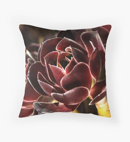 Rich & Golden Throw Pillow