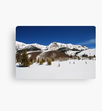 Winter View of the Boulder Mountains Canvas Print