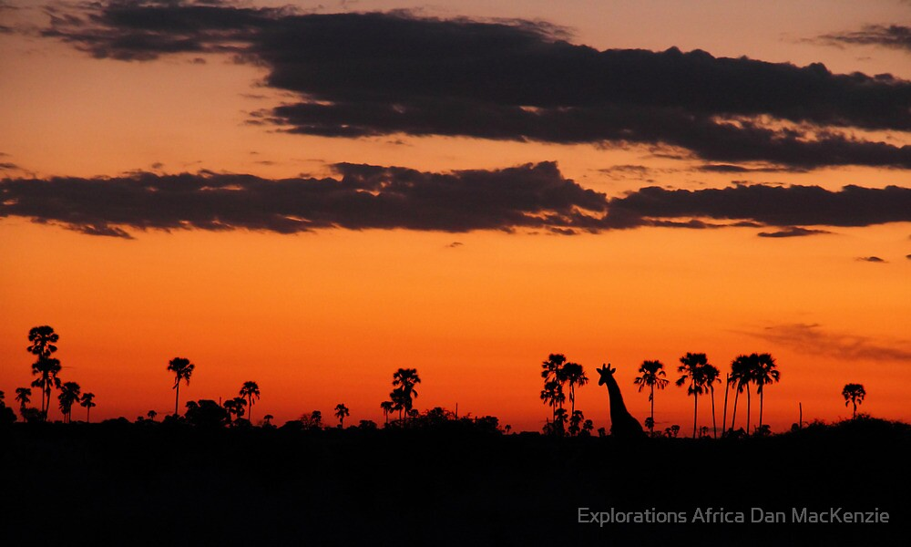 Last light by Explorations Africa Dan MacKenzie