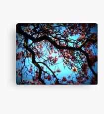 La Magnolia Canvas Print
