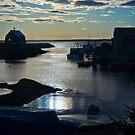 Setting Sun - Blue Rocks, Nova Scotia, Canada by Darlene Ruhs
