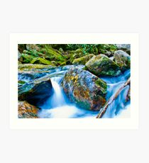 mountains streams Art Print