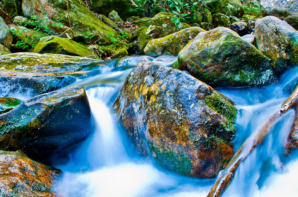 mountains streams by ALEX GRICHENKO