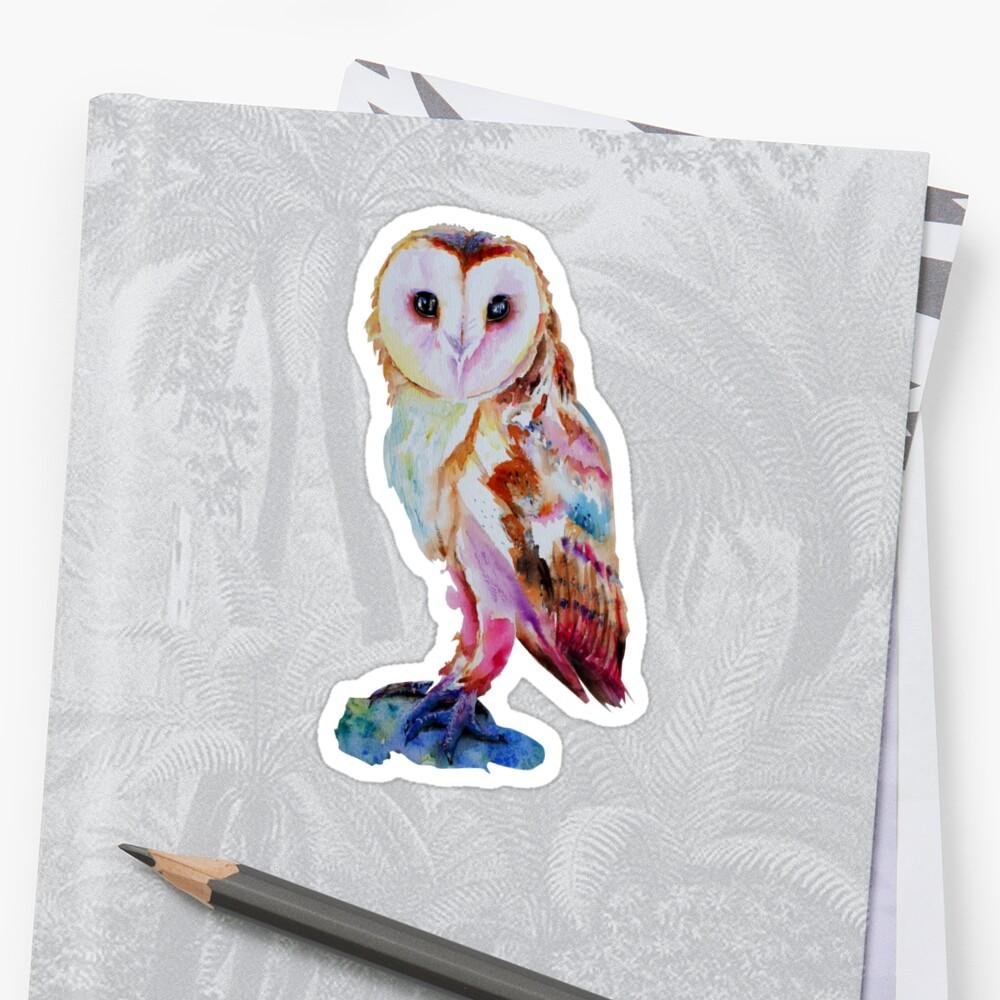 Barn Owl by IsabelSalvador