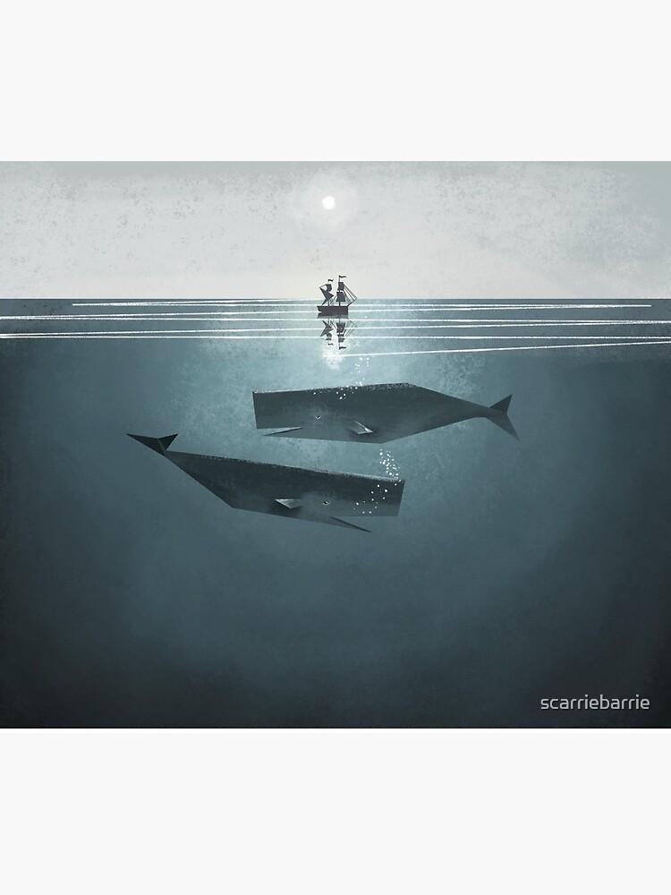 En el mar. de scarriebarrie