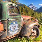 Alaskan Air Command by Bruce Taylor