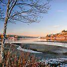 Quatse River Estuary by Gail Bridger