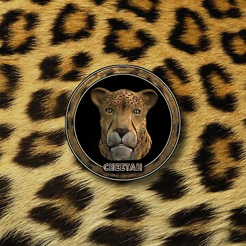 OS X 10.0 Cheetah by martinographics