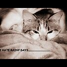 I hate rainy days (card) by Barbara Gerstner