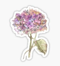 Autumn Hydrangea Sticker