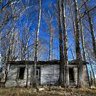 Almost Gone by Justin Atkins