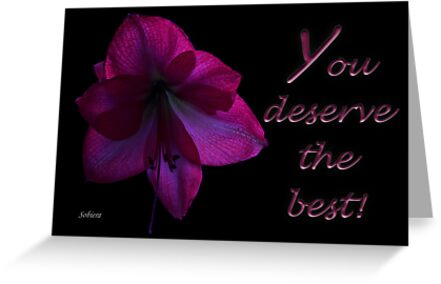 You Deserve the Best! by Rosemary Sobiera