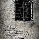 A Window into history. by yook