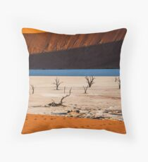 Light and Shadow at Deadvlei Throw Pillow