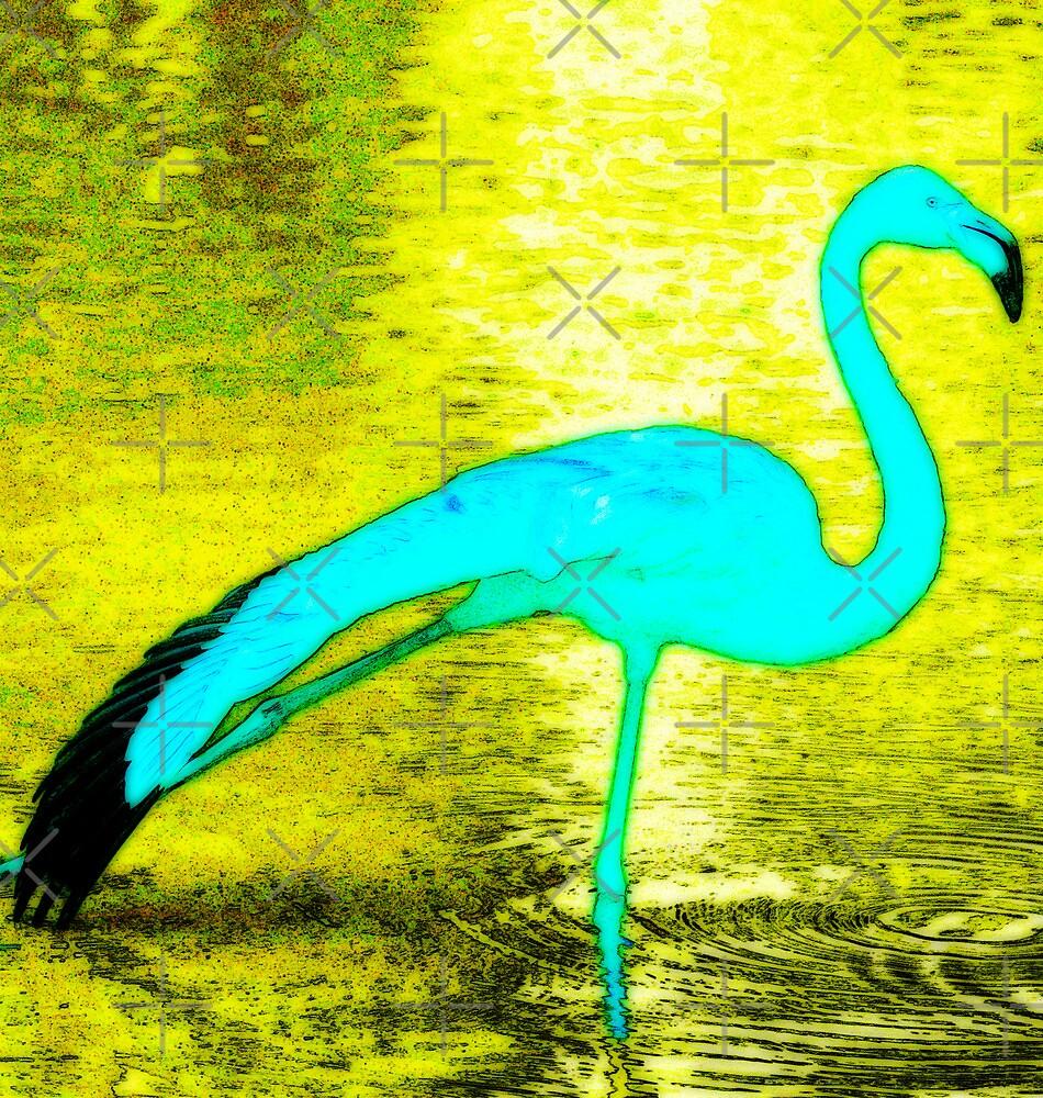 Blue Flamingo  by Ian Jeffrey