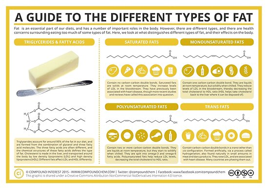 A Guide to Different Types of Fat by Compound Interest